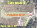 Rowe Crop Farm's Pumpkin Patch and Corn Maze